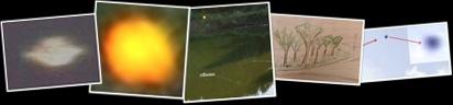 Visualizza UFO APICE